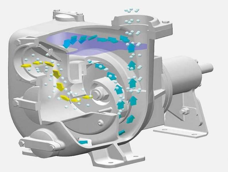 Самовсасывающий насос для воды: область применения, характеристики, установка и подключение, как выбрать лучший, обзор популярных моделей, их плюсы и минусы рейтинг и обзор моделей