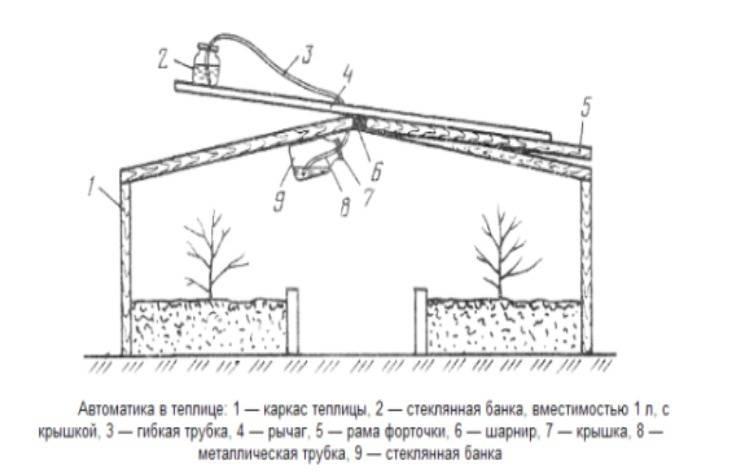 Форточка для теплицы из поликарбоната своими руками: как сделать и какие инструменты потребуются, где должны быть - варианты размещения русский фермер