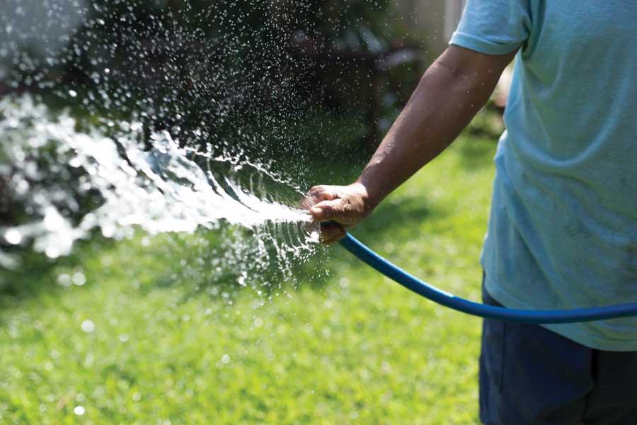 Полив огорода и сада: как лучше поливать на даче? можно ли поливать водой из бассейна и холодной из скважины? частота орошения, полив днем, в жару и в другие периоды