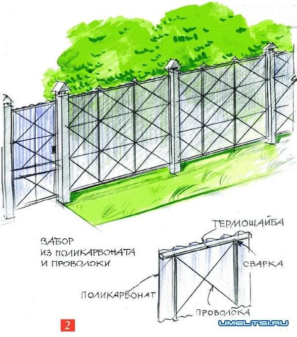Забор из поликарбоната – как сделал мой сосед