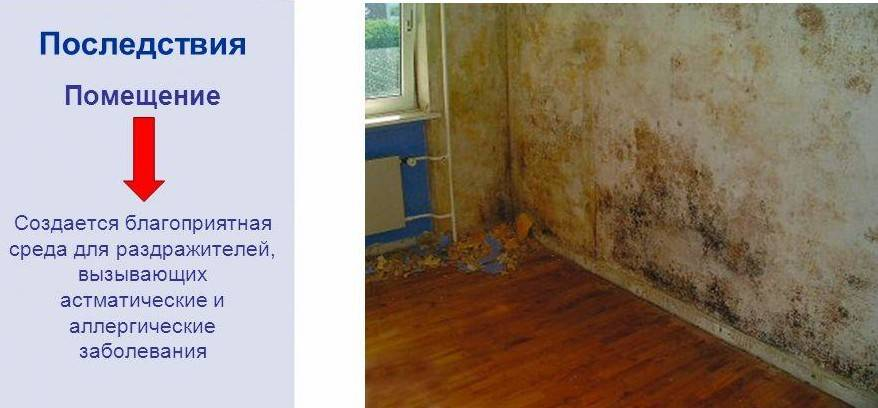 Инструкция по прочистке вентиляции в квартире — разбираемся во всех нюансах