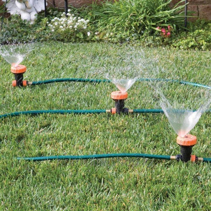 Как правильно поливать газон?