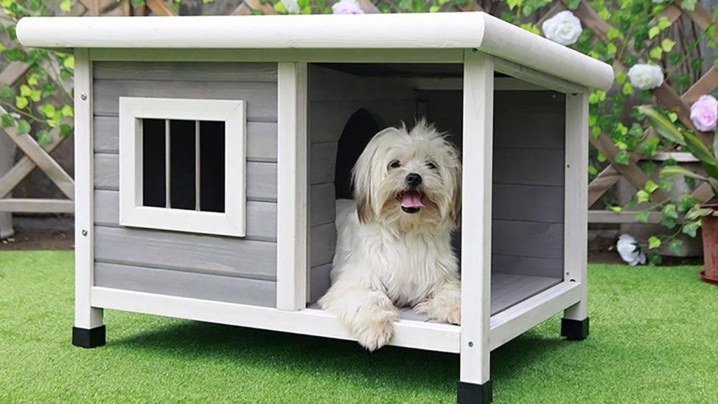 Инструкция, как сделать будку для собаки - пошаговое описание как изготовить элементы и собрать домик для собаки