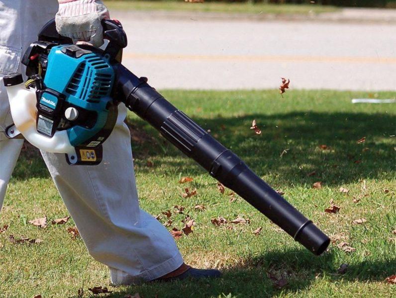 Топ-9 лучших садовых пылесосов – рейтинг 2020 года