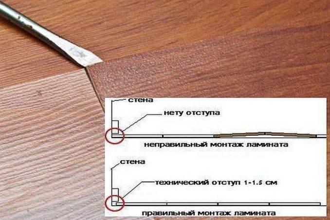 Что делать, если скрипит ламинат — инструкции с разбором пола и без