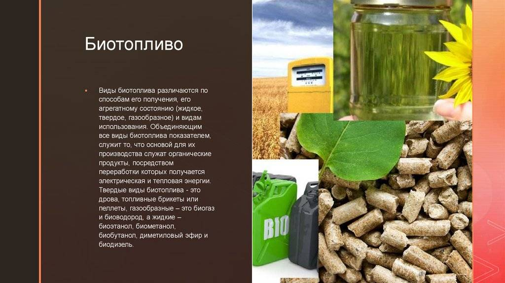 Биотопливо для каминов, разновидности, особенности, достоинства