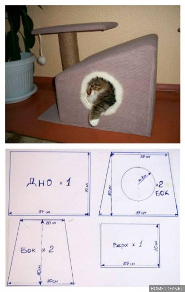 Как выбрать домик для кошки?