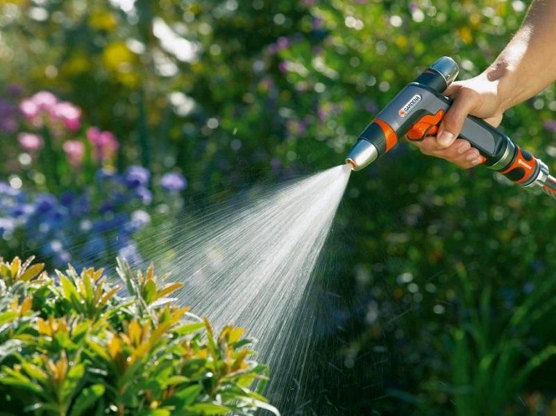 Можно ли поливать сад и огород водой из бассейна