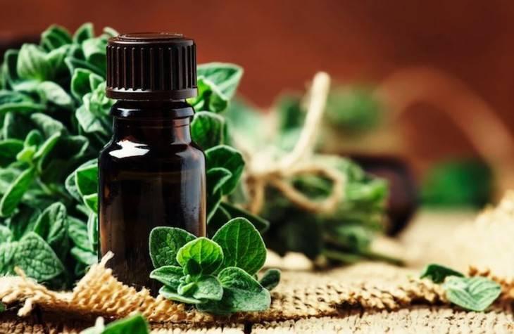 Эфирные масла для бани | столярный совет. для тех, кто любит работать с деревом