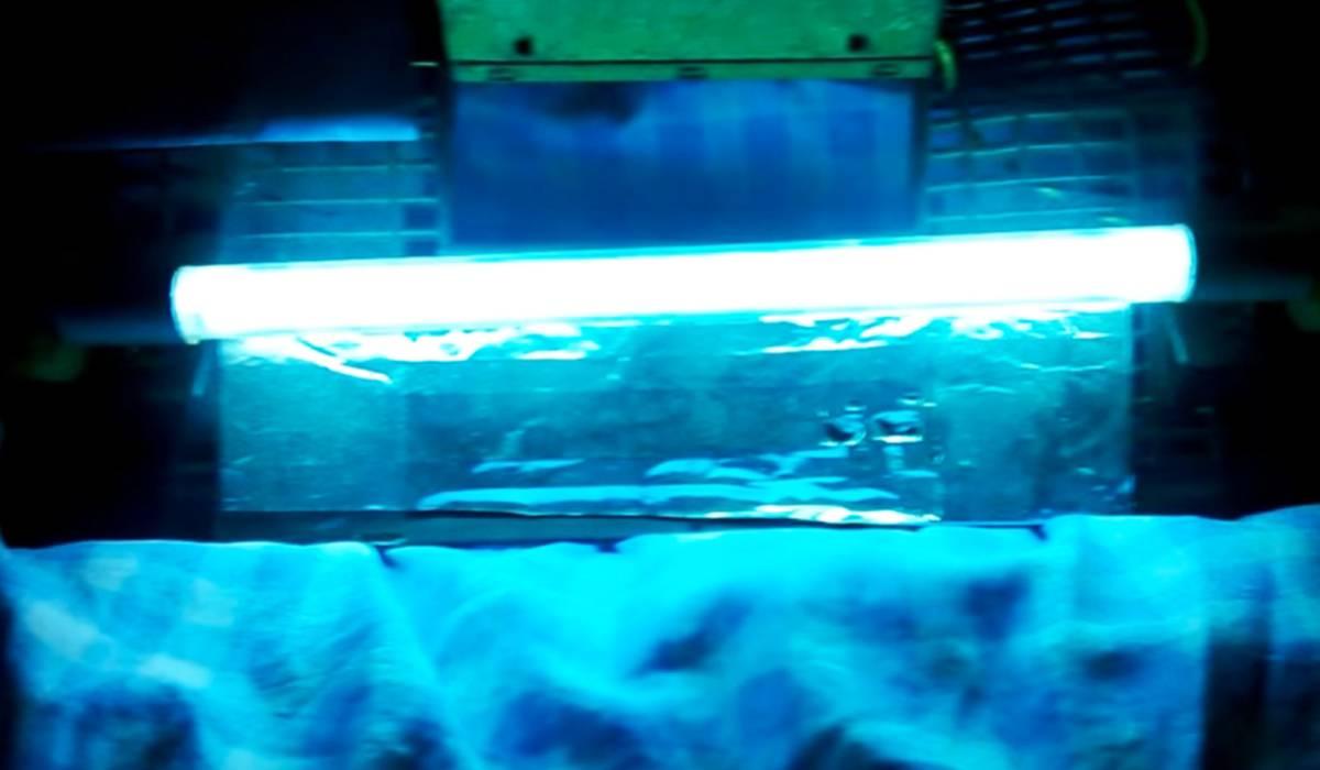 Уф-стерилизатор для аквариумов: зачем нужна кварцевая лампа и ультрафиолет для воды