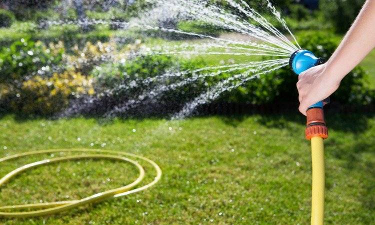 Можно ли поливать огород колодезной водой