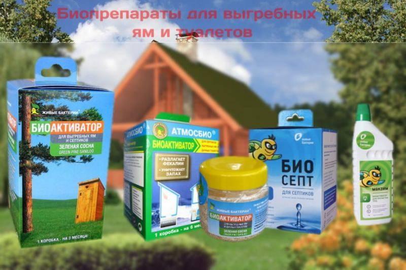 Биобактерии для выгребных ям: биоактиваторы и биогранулы, порошок и таблетки для дачных туалетов
