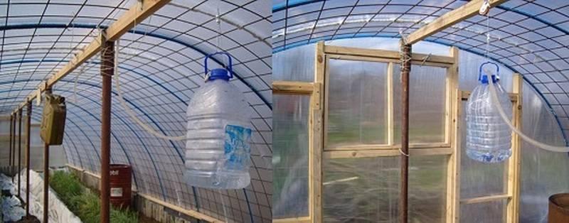 Вентиляция в теплице: виды, характеристики, инструкция по выбору системы