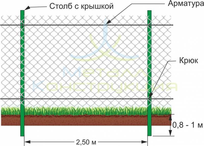 Оригинальный забор из сетки-рабицы для дачного участка
