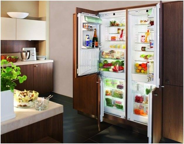 12 хороших недорогих холодильников — рейтинг 2021