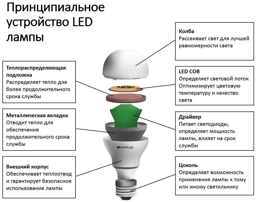 Люминесцентная лампа: что это такое, принцип работы, из чего состоит, как устроена и для каких светильников используется прибор дневного освещения