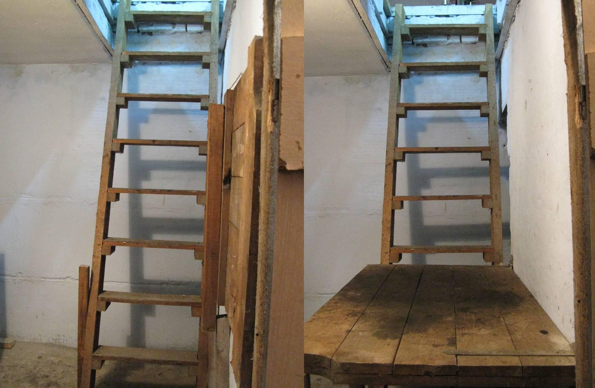 Лестница в подвал (погреб) своими руками: вариант конструкций и инструкция по строительству