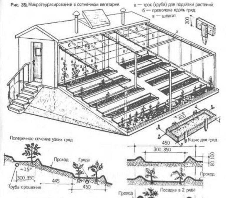 Теплица своими руками: проектирование и постройка парников и теплиц из подручных материалов