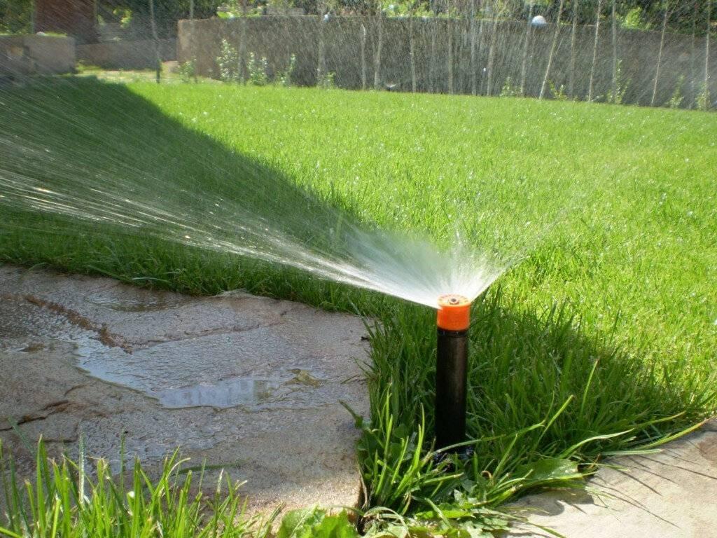 Полив огорода холодной водой из колодца