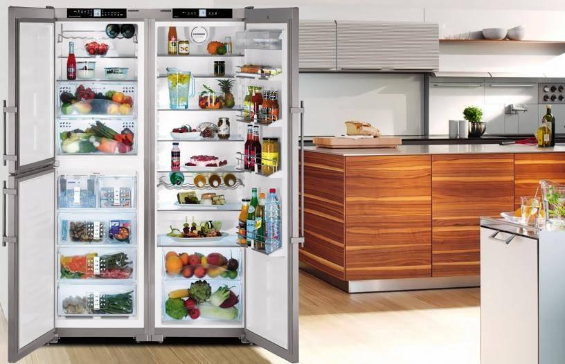 Двухдверный холодильник: плюсы и минусы двухстворчатой модели