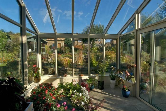 Создание зимнего сада в частном доме. виды зимних садов с фото и описанием