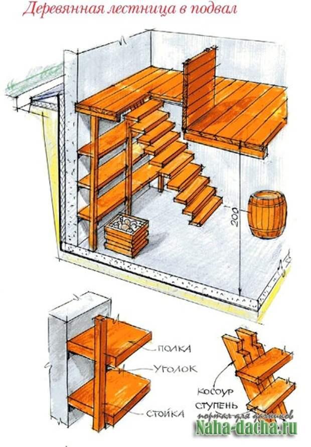 Лестница в погреб своими руками из дерева: этапы строительства