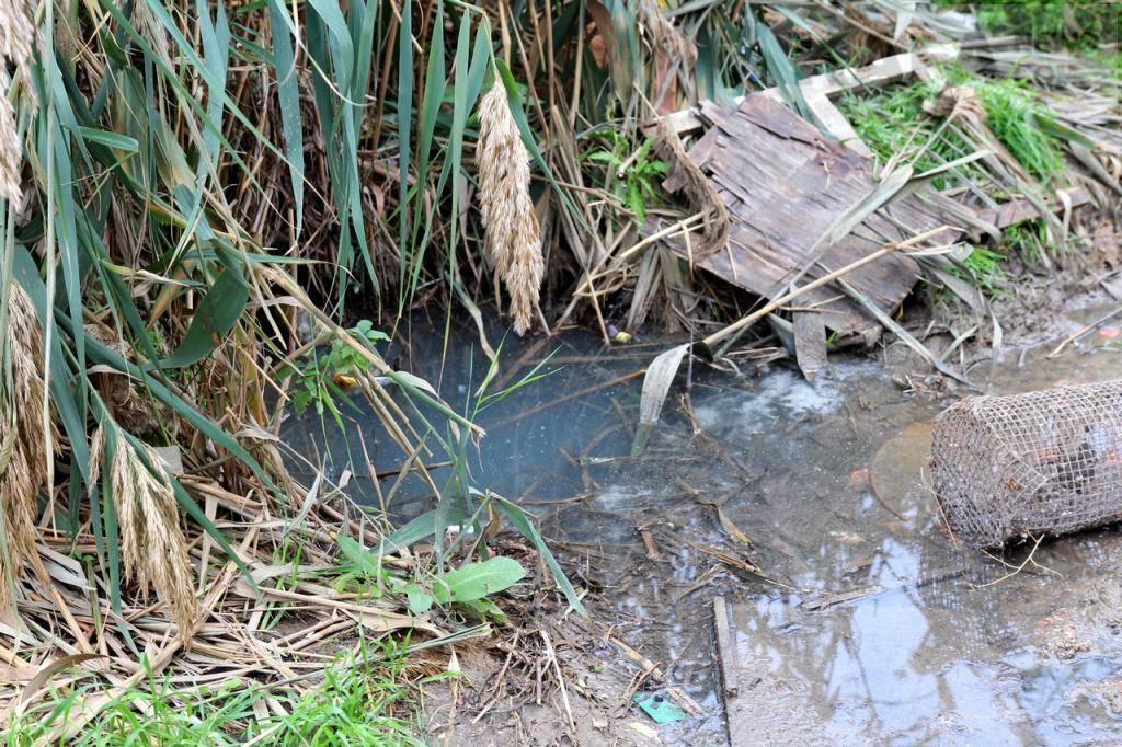 Что делать если квартиру затопило канализацией? | юк лидер