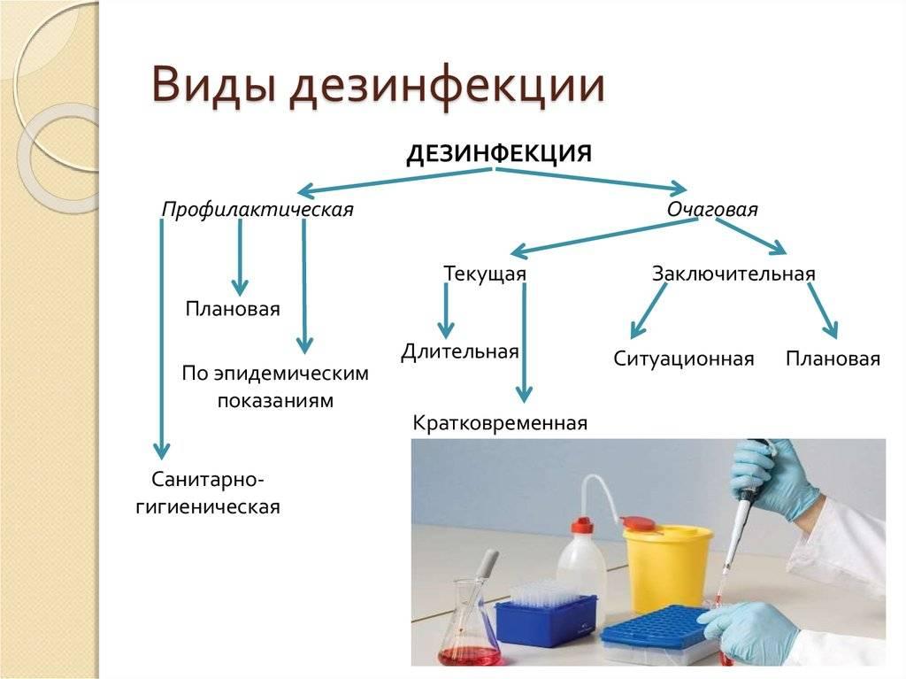 Какие действия нужно предпринять после проведения дезинфекции и дезинсекции