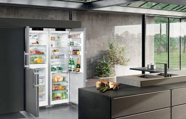 Двухдверный холодильник с морозильной камерой (52 фото): размеры широкой модели с морозилкой