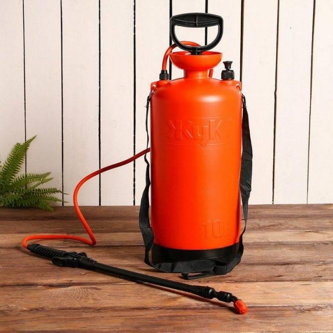 Лучший садовый опрыскиватель: рейтинг 2021 (ручные, аккумуляторные, бензиновые), параметры для выбора распылителя