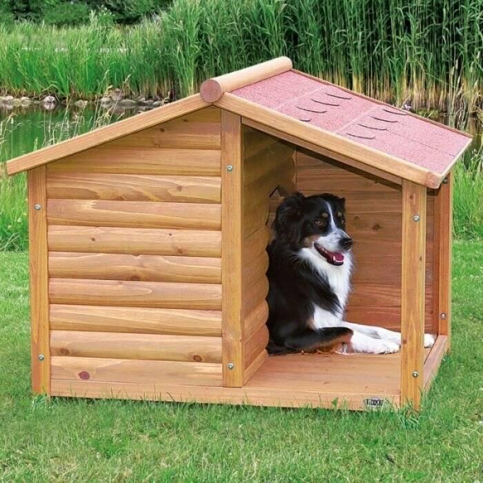 Будка для собаки - 145 фото красивых и прочных места для собаки