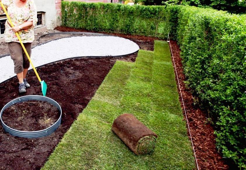 Как правильно посеять газонную траву: подготовка участка и посев