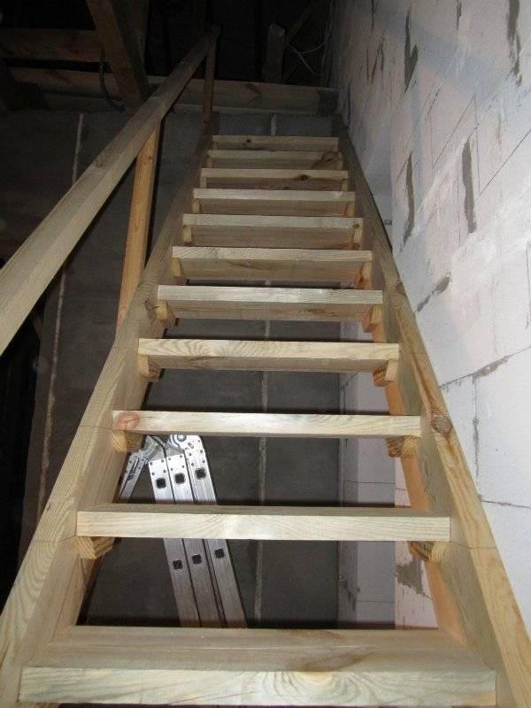 Лестница в подвал своими руками - три варианта конструкций