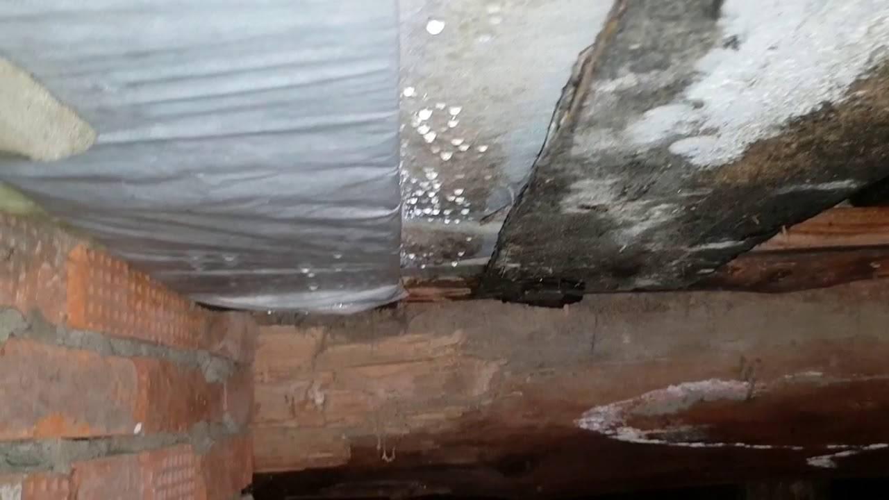 Как высушить погреб, подвал от сырости в частном доме, гараже, на улице