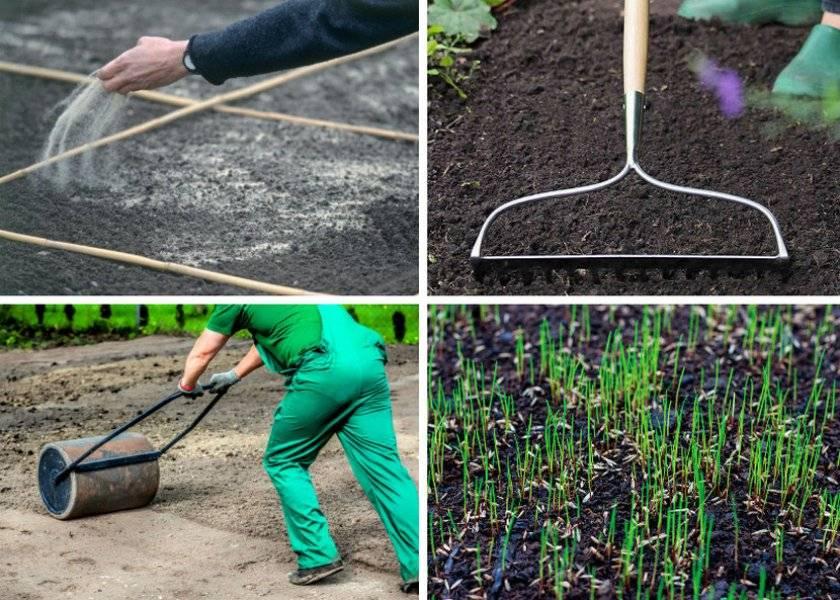 Как подготовить участок (почву) перед посевом газона - виды работ