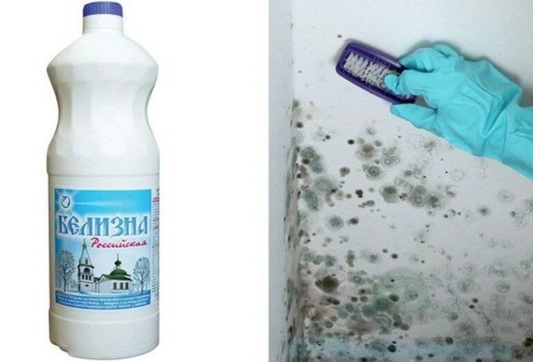 Как удалить черную плесень со стен в комнате или квартире: вывести грибок домашними средствами, как удалить при помощи специальных составов?
