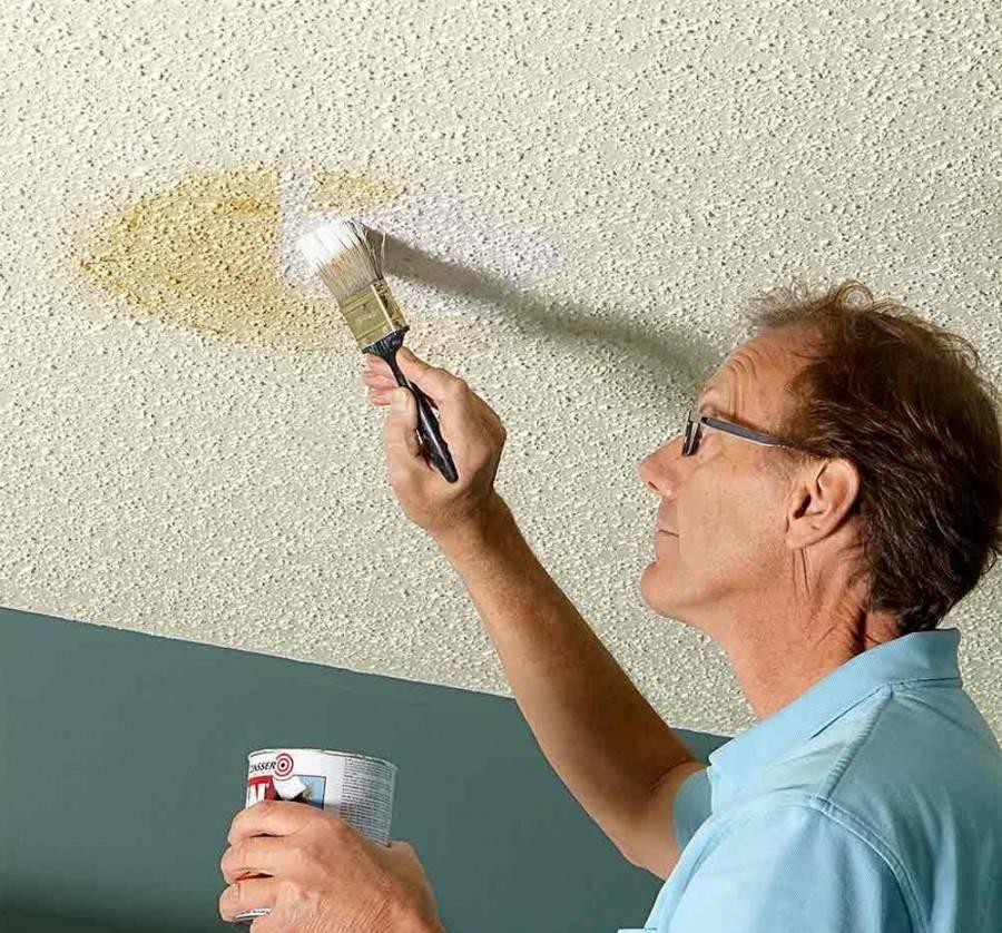 Покраска стен водоэмульсионной краской: оригинальные идеи для современного дизайна