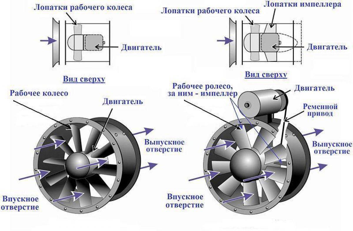 Выбор напольного вентилятора: радиальный, осевой или безлопастный | климатическое оборудование для дома