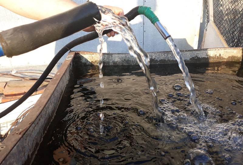 Вода из скважины пахнет сероводородом что делать и почему