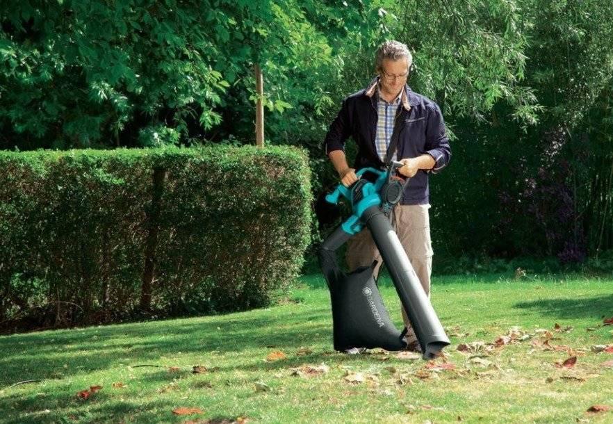 Топ-14 лучших садовых пылесосов: рейтинг лучших, как выбрать садовый пылесос