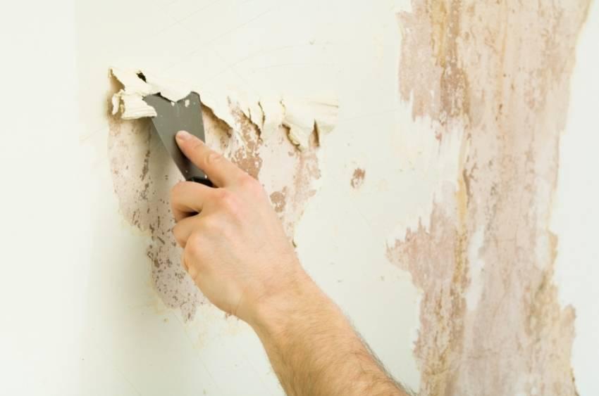 Подготовка стен для декоративной штукатурки — разъясняем тщательно