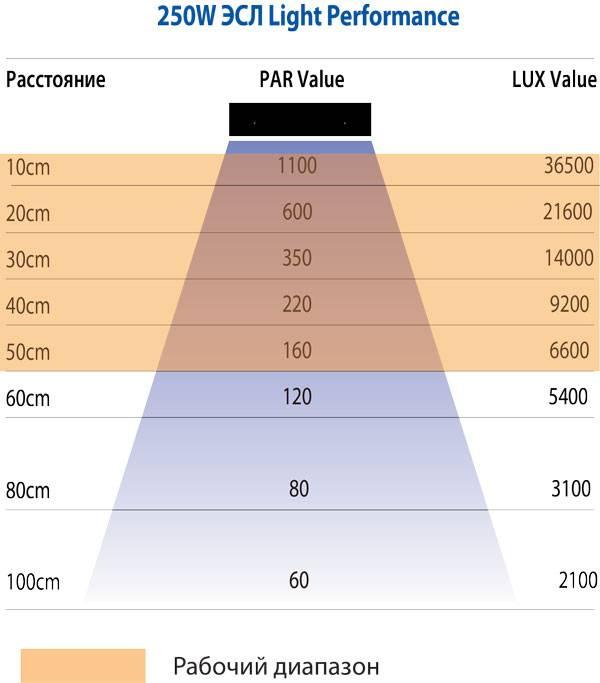 Освещенность помещений.  характеристики освещения и способы их улучшения.