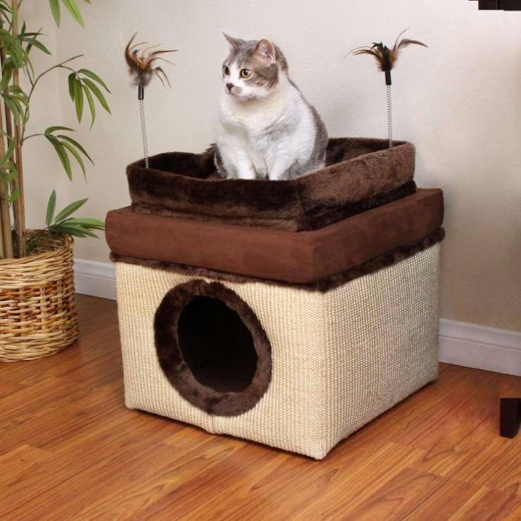 Уличный домик для кошки своими руками: как сделать теплый, зимний для дачи или для бездомных