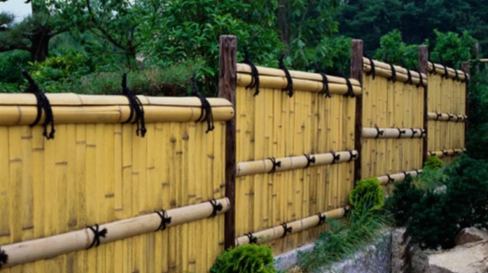 Самые красивые деревянные заборы для частного дома: описание и фотопримеры