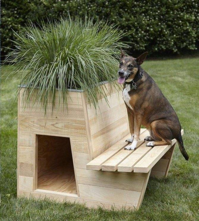 Как сделать элитную будку для собак — 4 лапки