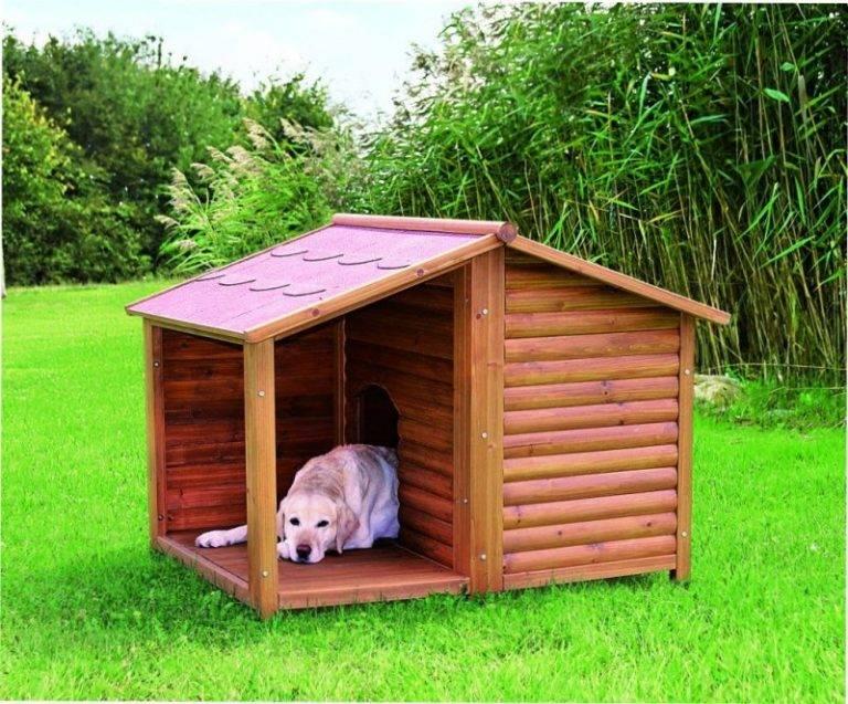 Будка для собаки: из каких материалов строить и обзор самых простых и красивых конструкций (145 фото)