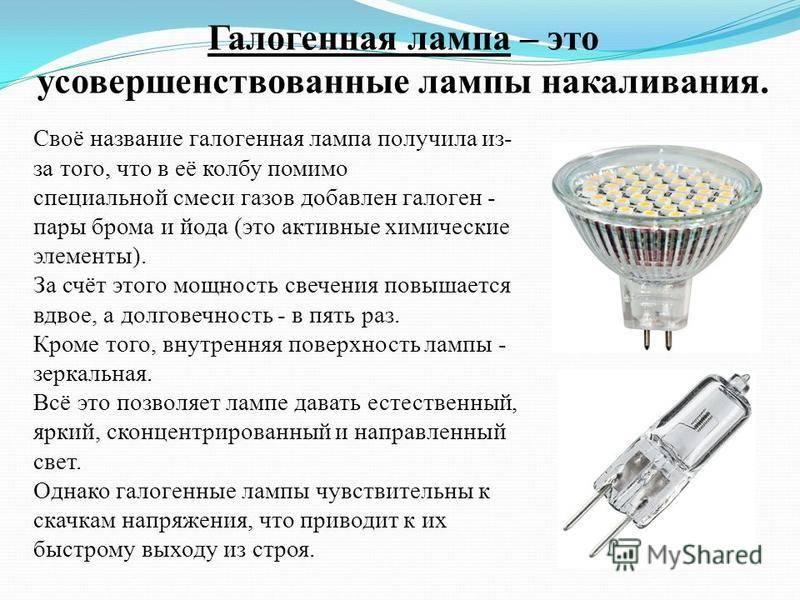 Что лучше — галогеновые лампы или светодиодные. какие лампочки лучше светодиодные или галогеновые.