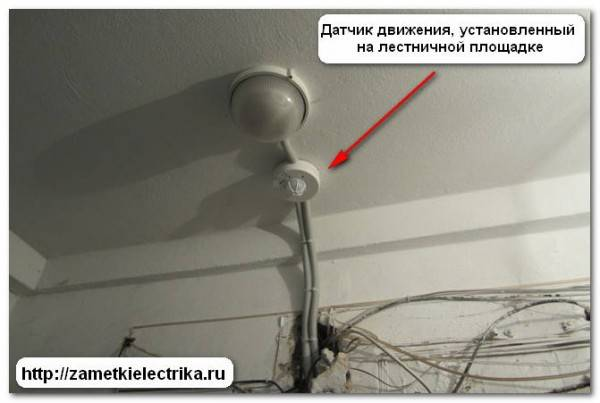 Светильники с датчиком движения для подъездов