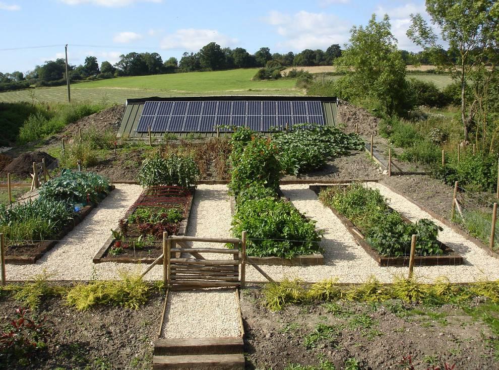 «ленивый огород» или огород для ленивых