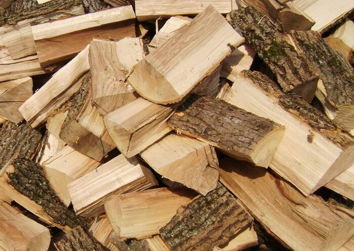 Выбираем лучшие дрова для бани – обзор дров разных пород